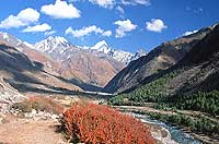 Alpine Valley, Kinnaur District